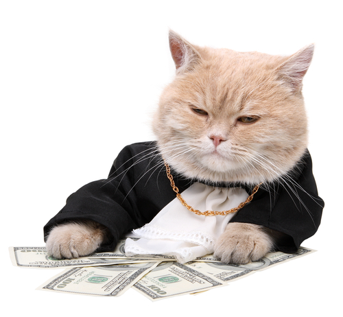 Wealthy fat cat