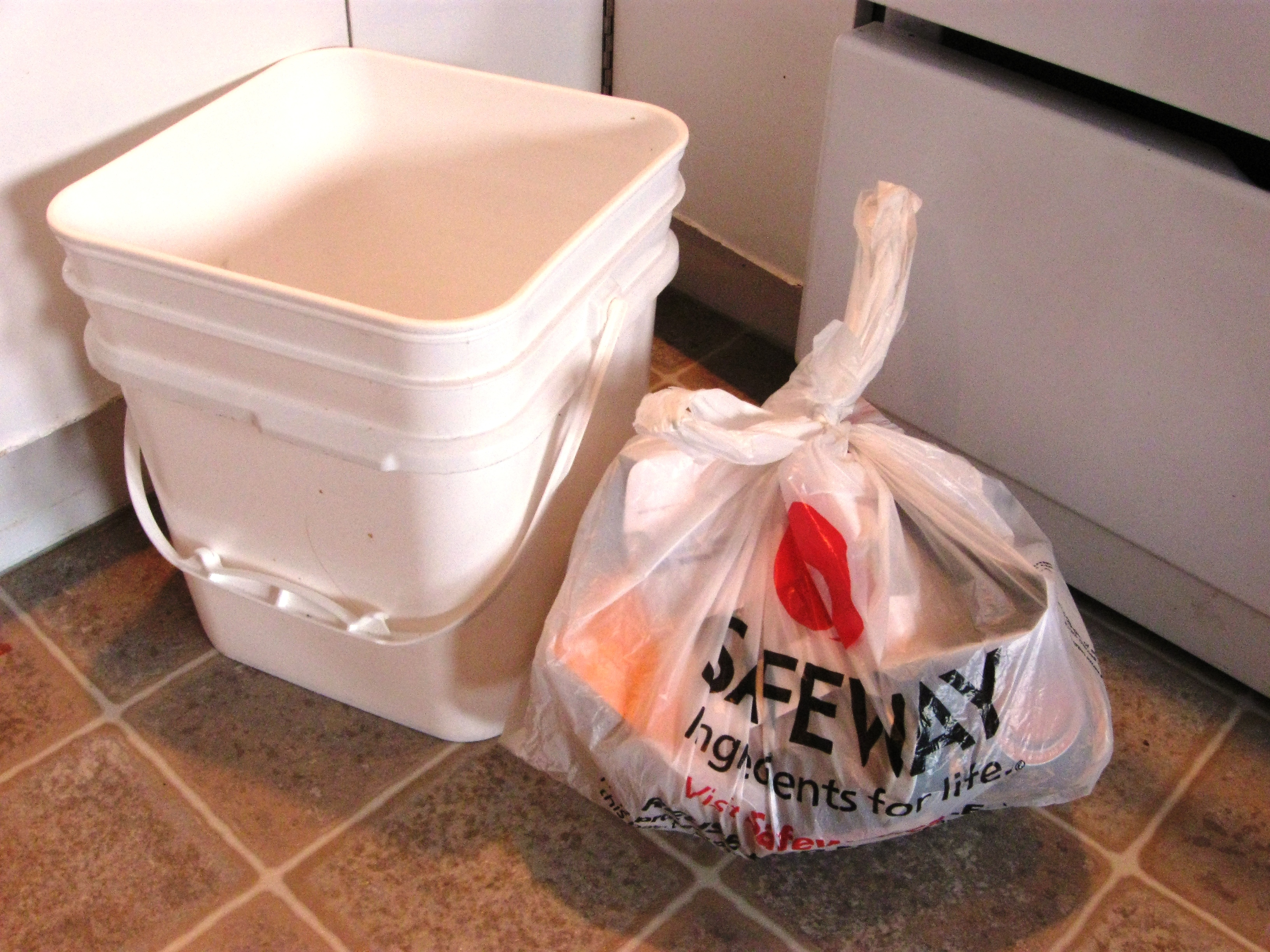 reusing grocery bags