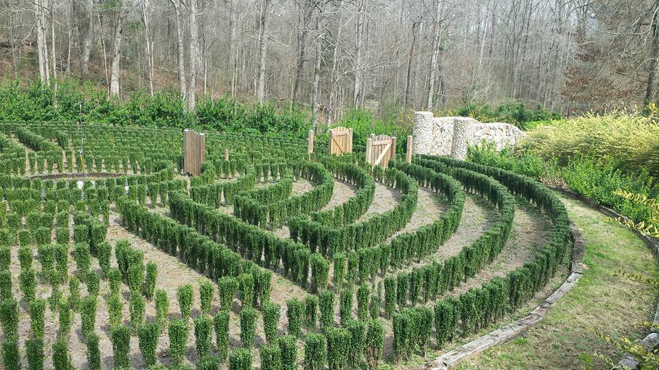 s-town-podcast-hedge-maze